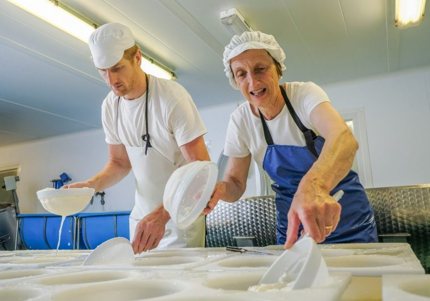 filling the curds into the moulds